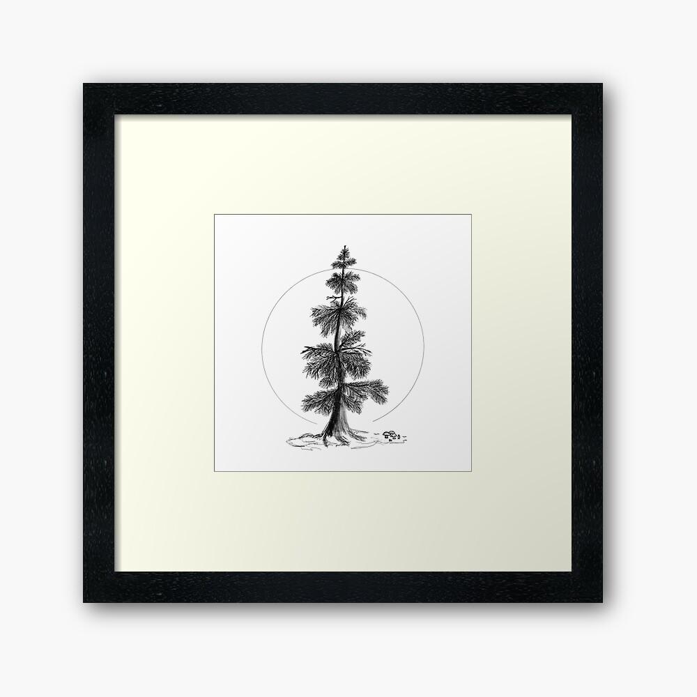 ever green tree-framed-art-print